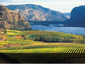 Okanagan BC Canada vacation rentals